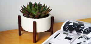 cylinder-desktop-acorn-woodstand-4_1