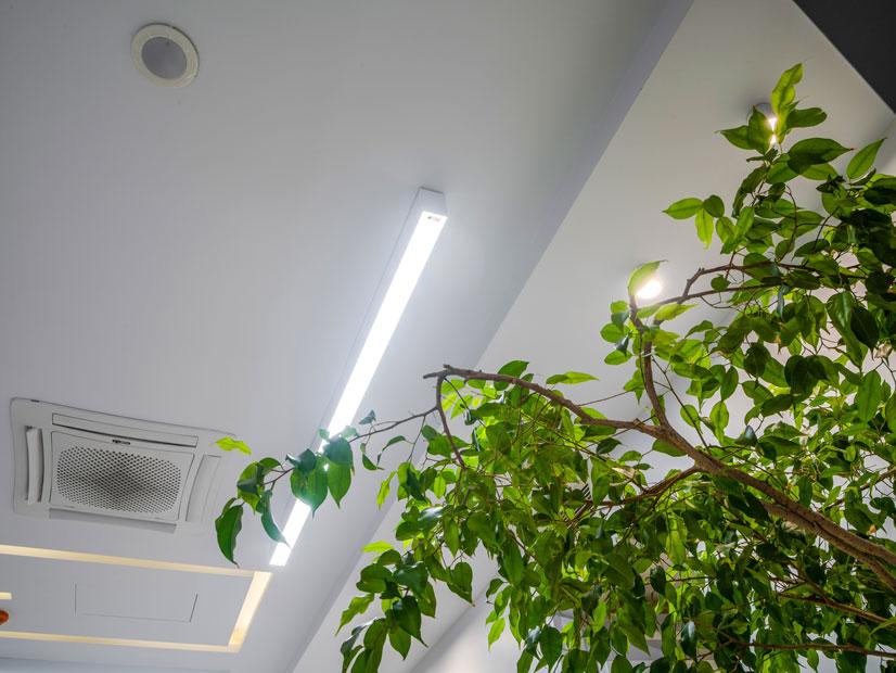 Novin_tek_Nooraneh_lighting (4)